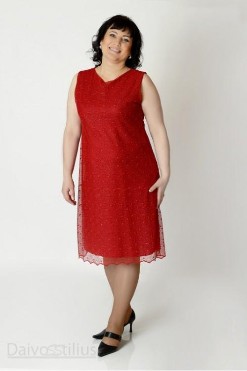 Suknelė žiema 1